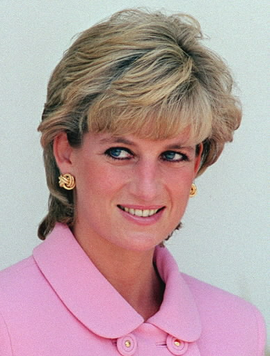 picture from http://dianamagazine.blogspot.co.uk/2010/09/diana-princess-of-wales-princess-diana.html  You should read this.