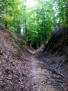 http://andrawatkins.com/2014/03/06/to-live-forever-tour-stop-sunken-trace/