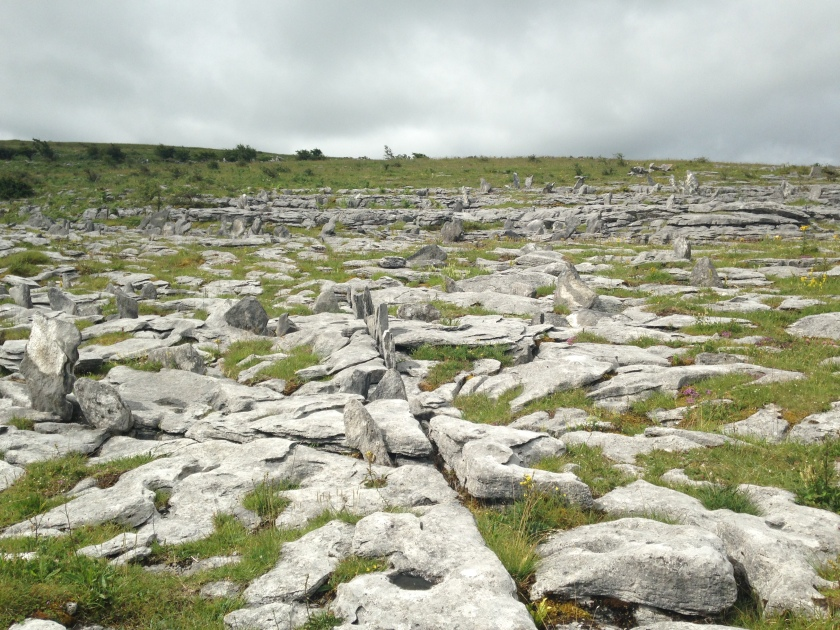 in the Burren, Co Clare