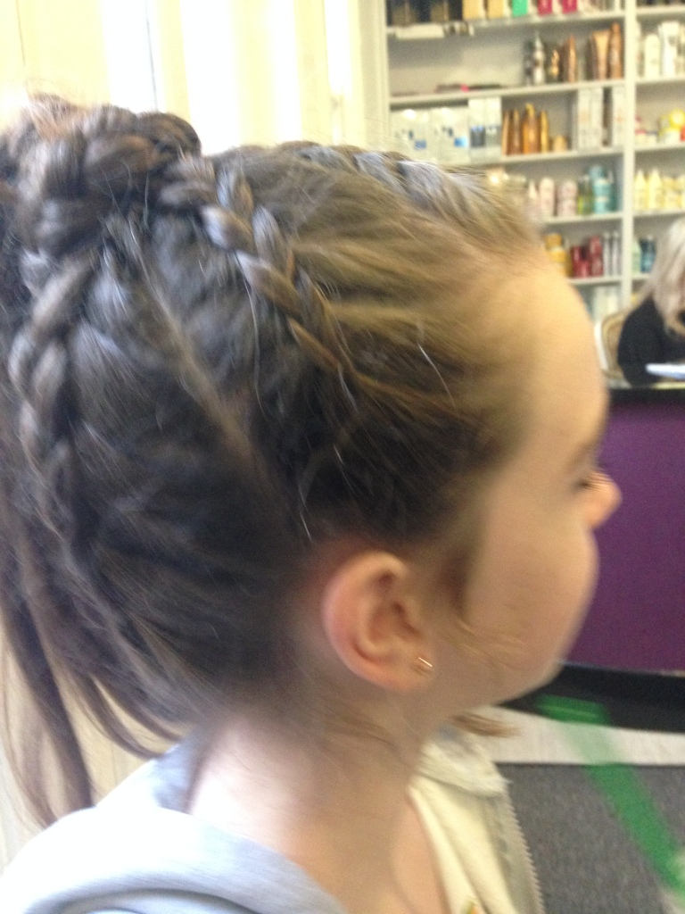 plaits updo