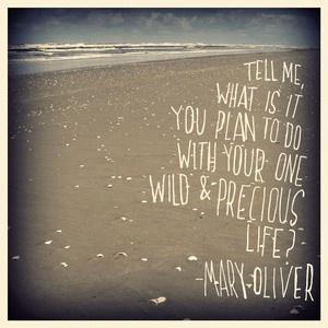 wild and precious life